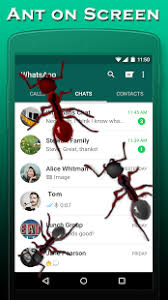 ants in phone apk app ants on screen apk for windows phone android and apps