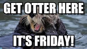 Otter Memes - get otter here otter meme on memegen