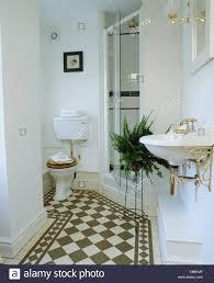 black white chequerboard flooring bathroom with boston black white chequerboard flooring bathroom with boston fern stand beside glass shower doors