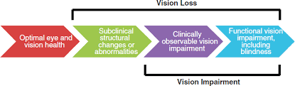 Icd 9 Code For Legal Blindness 1 Introduction Making Eye Health A Population Health Imperative