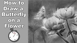 how to draw a butterfly and flowers in pencil time lapse youtube