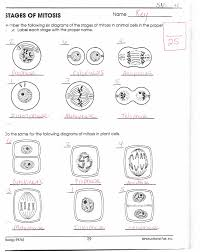 biology if8765 worksheet answers defendusinbattleblog