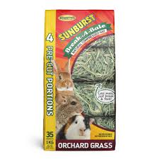 All Living Things Luxury Rat Pet Home by Grass U0026 Hay For Small Animals Alfalfa Tunnels Petco Com