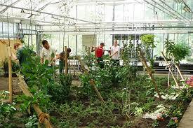 garten und landschaftsbau ausbildung lehrgangsinhalte garten und landschaftsbau gartenbauzentren der