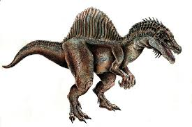 spinosaurus pictures u0026 facts dinosaur database