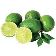 lime citrus tree michigan bulb