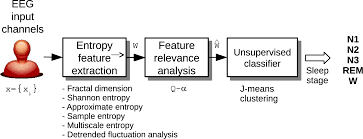 entropy free full text automatic sleep stages classification