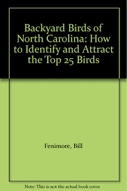 backyard birds of north carolina how to identify and attract the