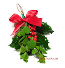 where to buy mistletoe mistletoe and buy christmas mistletoe and online