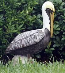 pelican pride in detail nola