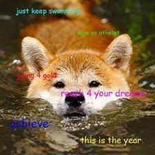 Doge Meme Pronunciation - much doge meme doge the best of the doge meme lol pinterest