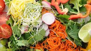 cuisine crue et vivante l alimentation vivante un guide complet sur l alimentation crue