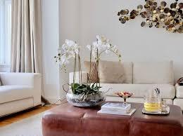 Wohnzimmer Joop Jette Joop Farben Mm Besuch Kunst Noch Dazu Design In Einer