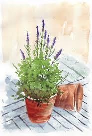 maree clarkson art u0026 creativity my sketchbook lavender in a
