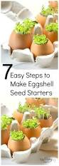 Gardening For Beginners Vegetables by 206 Best Gardening Tips Images On Pinterest Gardening Flower
