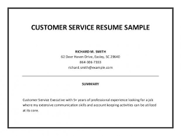 professional summary for resume exles professional summary exles fresh photoshot writing of resume