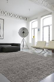 Costco Area Rugs 5x7 Decor Grey Shag Rug And Fluffy White Area Rug Also Area Rugs At