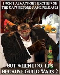 Guild Wars 2 Meme - the charming charr yep have some the most charming charr and