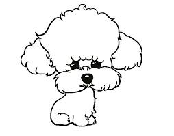 puppy poodle coloring coloringcrew