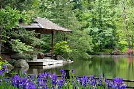 Botanical Gardens Il Japanese Gardens Rockford 2018 All You Need To