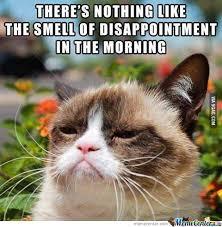 Good Morning Cat Meme - good morning grumpy cat by nogoodnameleftforme meme center
