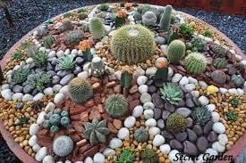 Rocks For Garden Painted Cactus Rock Garden Easy