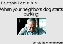 Dog Barking Meme - gif dog funny gifs funny gif funny gifs reaction gif dogs bark