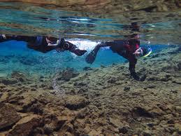 jeep snorkel underwater horseback riding and snorkeling tour