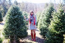 christmas tree farm shop dandy shop dandy blog just