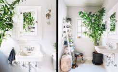 plante de cuisine meuble de rangement meuble de rangement castorama rangement de
