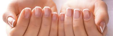 nail salon your friendly nail care provider