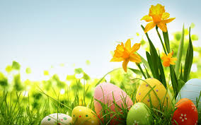 happy easter colorful hd wallpaper free download hd wallpapers