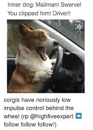 Swerve Memes - 25 best memes about dog mailman dog mailman memes