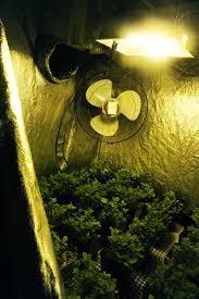 Hps Lights De Hps Grow Lights Grozinegrozine