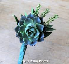 succulent boutonniere succulent boutonniere new from copper flowers