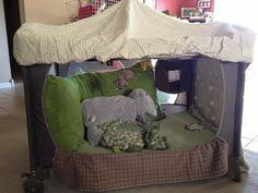 great idea for when baby get too big for their crib camping