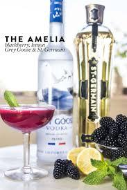 best 25 grey goose drinks ideas on pinterest malibu mixed