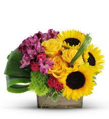 thanksgiving flowers free shipping phoenix florist phoenix az flower delivery avas flowers shop