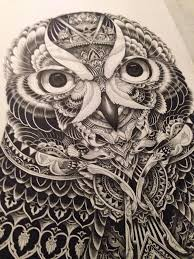 Patterned Flying Owl Drawing Illustration 160 Best Zentangle Owls Images On Owls Birds And Mandalas