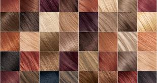 Types Of Hair Colour by Loreal Hair Color Types Best Hair Color 2017