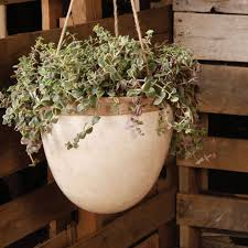 homart mulberry hanging planter lrg white areohome