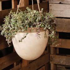 white hanging planter homart mulberry hanging planter lrg white areohome