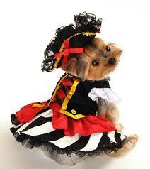 Halloween Dog Costume Jack Sparrow Pirate Hallowen Dog Costume Halloween Costume Dogs