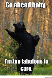 Fab Meme - fabulous bear memes quickmeme