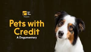 commercials with australian shepherds pets with credit a dogumentary youtube