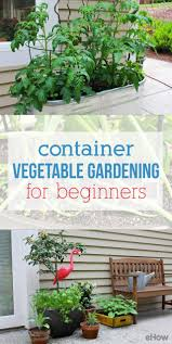 Beginner Vegetable Garden Layout by Container Vegetable Gardening For Beginners Container Gardening