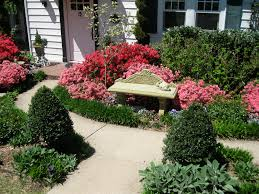 Azalea Topiary Dream Gardens Landscaping And Garden Design Portfolio