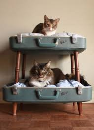 Bunk Bed For Dogs Cozy Cat Beds Furniture Animal Love Pinterest Cat Crate