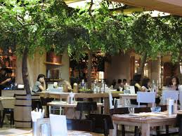 very nice environment awesome place for business lunch or dinner