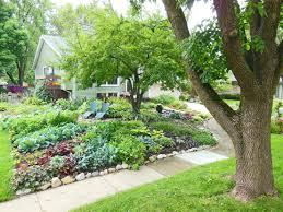 Backyard Flower Garden Ideas by Interior Killer Backyard And Garden Decoration Using Coconut Tree